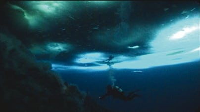 Oeuvre: Herzog's Feature Films: The Wild Blue Yonder
