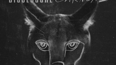 Disclosure: Caracal