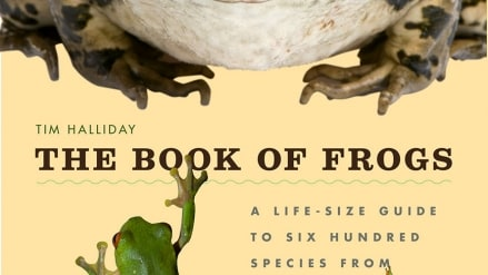 The Book of Frogs: by Tim Halliday