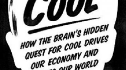Cool: by Steven Quartz and Anette Asp
