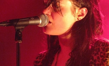 Concert Review: The Kills/The Horrors