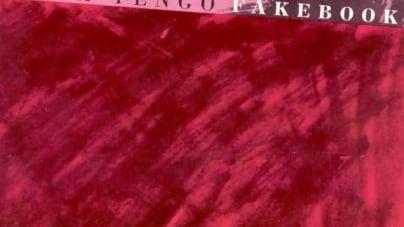 Revisit: Yo La Tengo: Fakebook