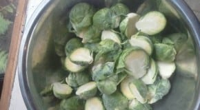 Spectrum Seasonal: Crispy Brussels Sprouts