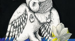 Songs: Ohia: Magnolia Electric Co: 10th Anniversary Deluxe Edition