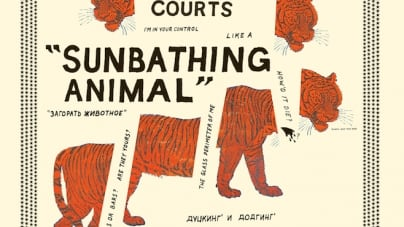 Parquet Courts: Sunbathing Animal