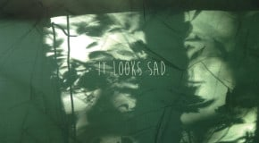It Looks Sad.: Self-Titled