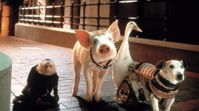 Criminally Underrated: Babe: Pig in the City
