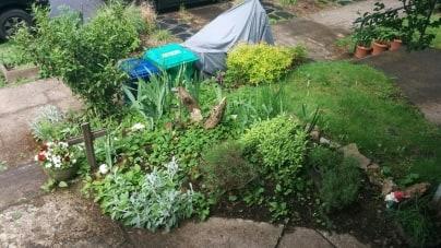 Gardening Season 2016