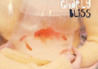 Charly Bliss: Guppy
