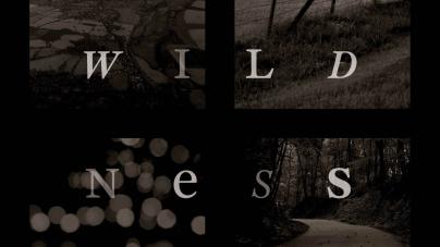 Wildness: Edited by Gavin Van Horn and John Hausdoerffer