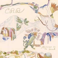 Chris Robinson Brotherhood: Barefoot in the Head