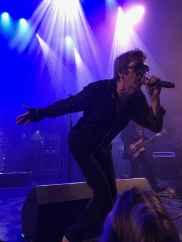 Concert Review: Psychedelic Furs/Robyn Hitchcock
