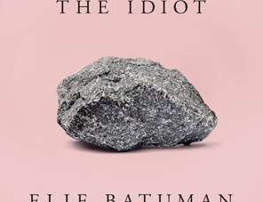 The Idiot: by Elif Batuman