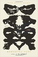 The Dark Dark: by Samantha Hunt