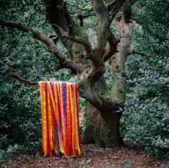 James Holden & The Animal Spirits: The Animal Spirits