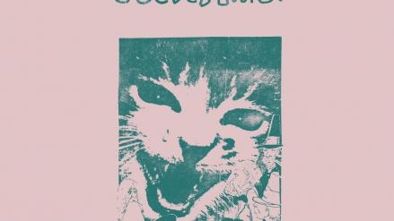 Various Artists: Paul Major: Feel the Music (Vol. 1)