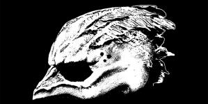 Legend of the Seagullmen: Legend of the Seagullmen