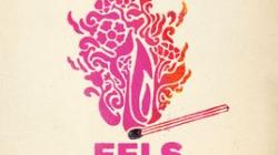 Eels: The Deconstruction