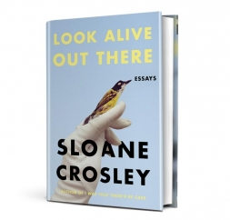 Look Alive Out There: by Sloane Crosley