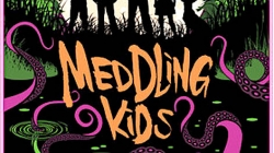 Meddling Kids: by Edgar Cantero