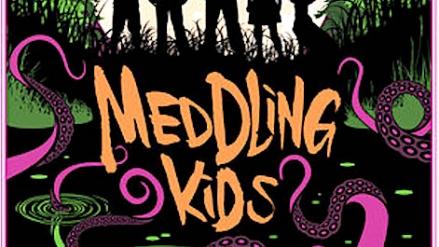 Meddling Kids: by Edgar Cantero