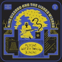 King Gizzard and the Lizard Wizard: Flying Microtonal Banana