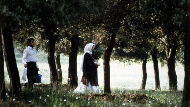 Oeuvre: Kiarostami: Through the Olive Trees