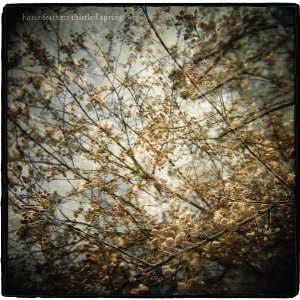 Horse Feathers: Thistled Spring