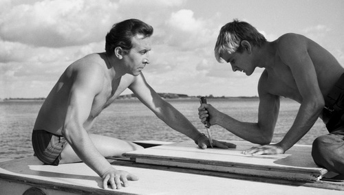 Oeuvre: Polanski: Knife in the Water
