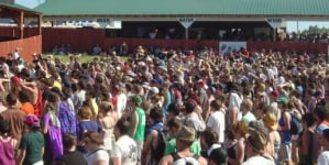 Sasquatch Festival: An Insider's Perspective