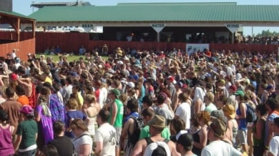 Sasquatch Festival: An Insider's Perspective
