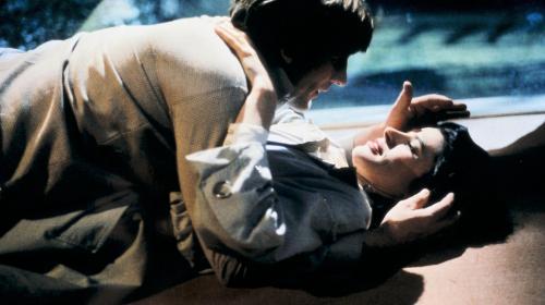 Oeuvre: Truffaut: The Woman Next Door