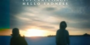 Los Campesinos!: Hello Sadness