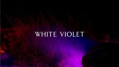 White Violet: Hiding, Mingling