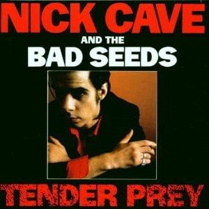 nick-cave-tender