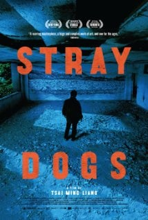 stray-dogs1