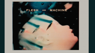 Daniel Lanois: Flesh And Machine