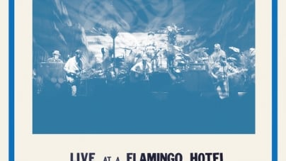 Dr. Dog: Live at a Flamingo Hotel