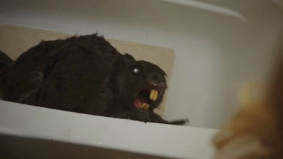 From the Vaults of Streaming Hell: Zombeavers
