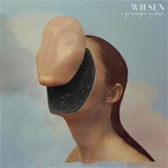 Wilsen: I Go Missing in My Sleep