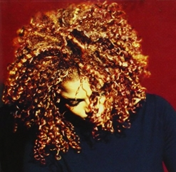 Holy Hell! The Velvet Rope Turns 20