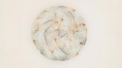 Lotte Kestner: Off White