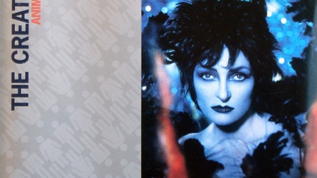 Discography: Siouxsie Sioux: Anima Animus