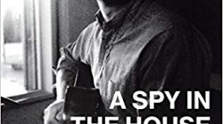A Spy in the House of Loud: by Chris Stamey