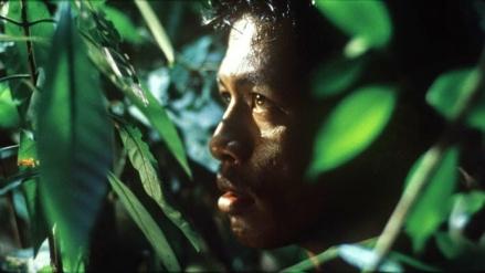 Oeuvre: Weerasethakul: Tropical Malady