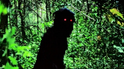 Oeuvre: Weerasethakul: Uncle Boonmee Who Can Recall His Past Lives