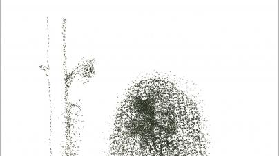 Yoko Ono: Warzone