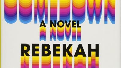 The Comedown: by Rebekah Frumkin