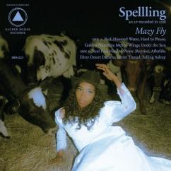 Spellling: Mazy Fly