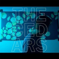 John Vanderslice: The Cedars